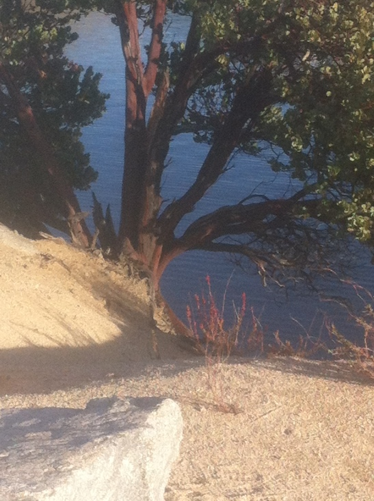 silverwood-Lake-Jan-2014-11