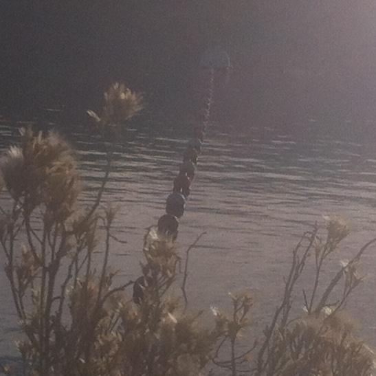 silverwood-Lake-Jan-2014-16