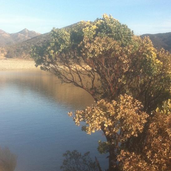 silverwood-Lake-Jan-2014-23