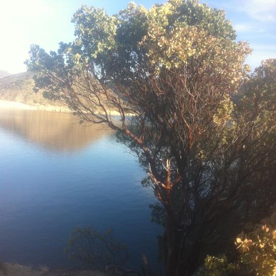 silverwood-Lake-Jan-2014-24
