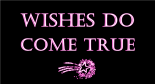 wishes-do-come-true-wordpress