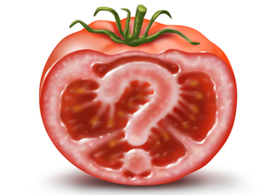 TOMATO-GMO-what-are-you-eating