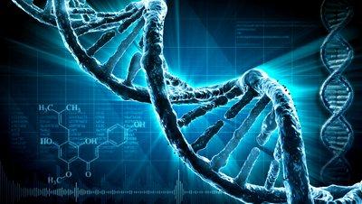 DNA-STRAND-911-HIJACKERS-FBI