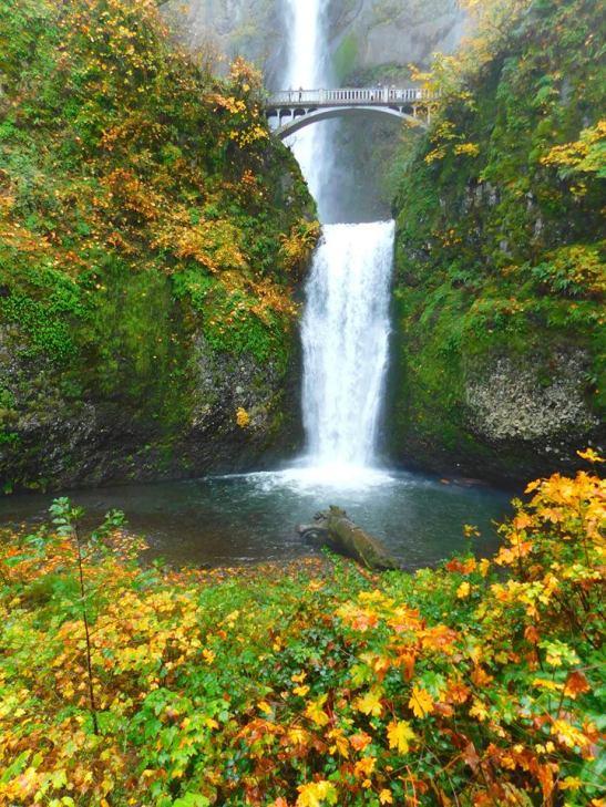 multnomah-falls-3